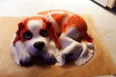Dětský dort č. 2